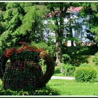 Kwiatowy dzban