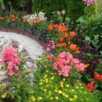 W moim małym ogrodzie