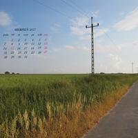 Kartka z kalendarza - sierpień
