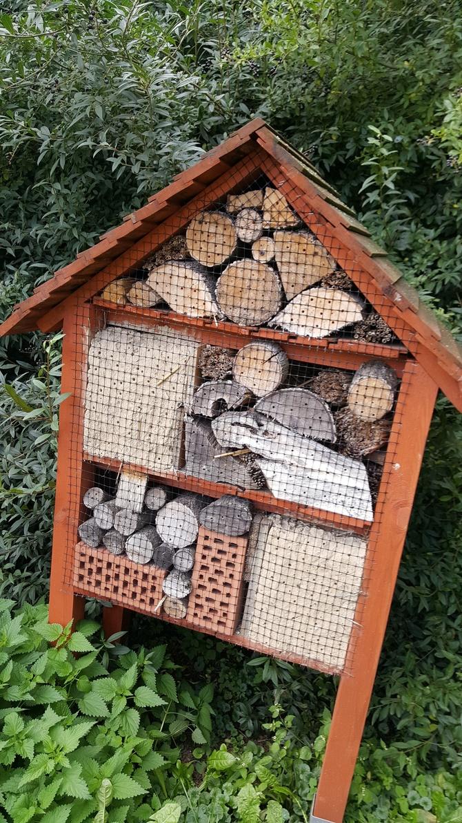Domek dla owadów na