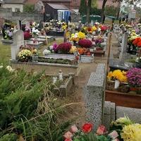 Dużo kwiatów na grobach