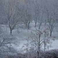 Dzisiaj rano u mnie spadł pierwszy śnieg