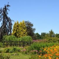 Latem tak ładnie było w ogrodzie botanicznym.