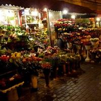 Wszystkie kwiaty dla Was :)))