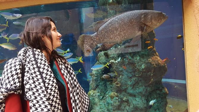 Ta ryba mi się spodobała