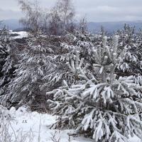 21 I  Światowy Dzień Śniegu.