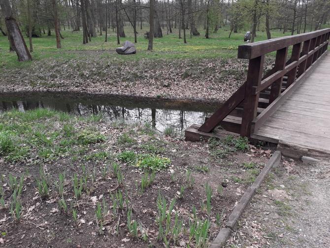 Park w Uniejowie