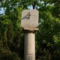 Drzewa i zegar słoneczny w parku