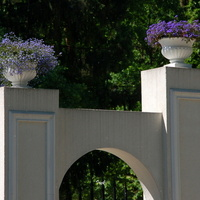 Kwiaty nad wejściem do pałacyku.