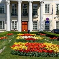 Kwiaty przed Pałacem Mniszchów w Warszawie.