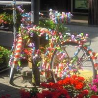 kolorowy rower.