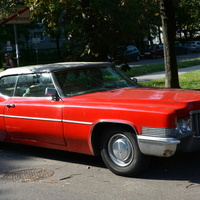 Cadillac, 30 VIII był Dniem Taksówkarza