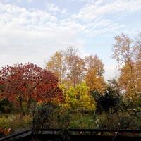 Moja jesień ogrodowa