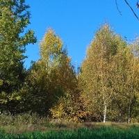Za takie widoki kocham jesień...
