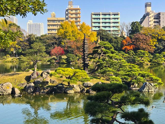 Jesień w Tokio