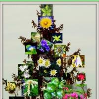 Galeriowe życzenia świąteczne :)