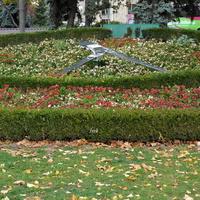 Zegar kwiatowy w Centrum Stolicy