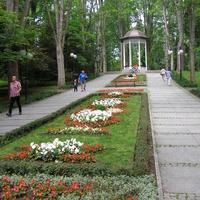 Kwiaty w Polanicy Zdroju