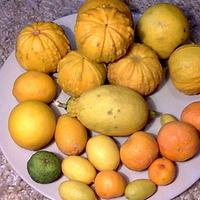 Patera owoców z własnej uprawy ;)