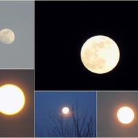 Pan Księżyc dzisiaj ma swój dzień :)