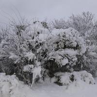 Powrót zimy.......