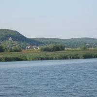 Tatarak po drugiej stronie Wisły