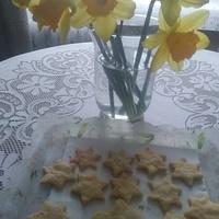 Zonkilki i ciasteczka :)