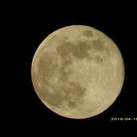 Pierwsza wiosenna pełnia Księżyca