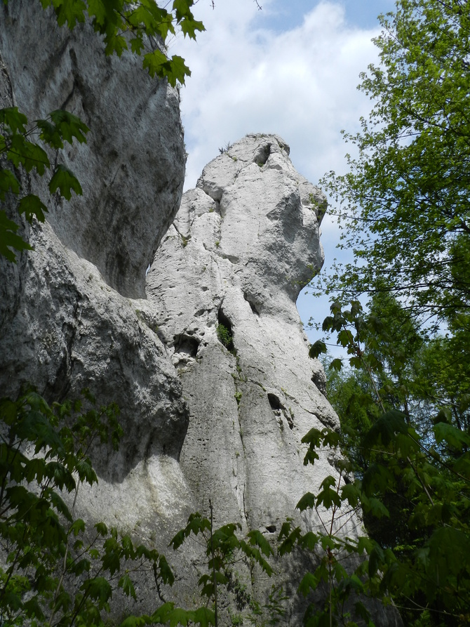 Skały Góry Janowskiego