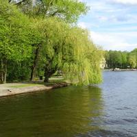 Augustowskie klimaty