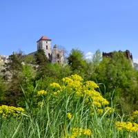 ruiny zamku Tenczyn, Jura
