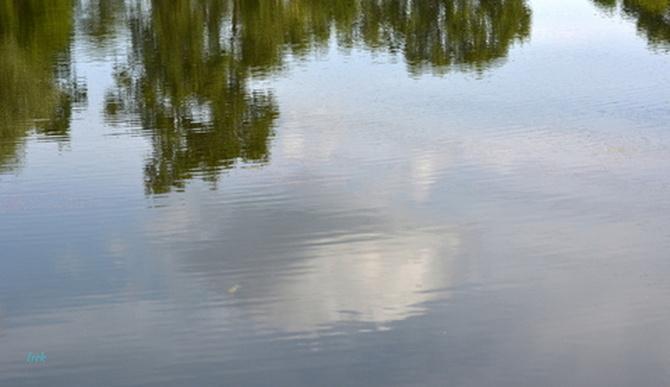 widok na staw z chłodną wodą