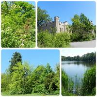 Pałac Sybilli otoczony parkiem