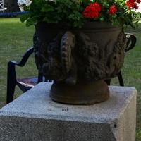 Eleganckie naczynie z kwiatami w miasteczku