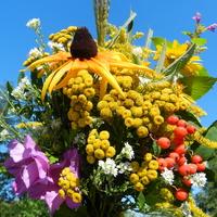 Bukiet polnych i ogrodowych  kwiatów