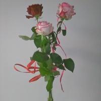 Różyczki od wujka