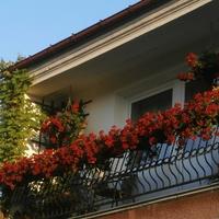 Mój balkon...