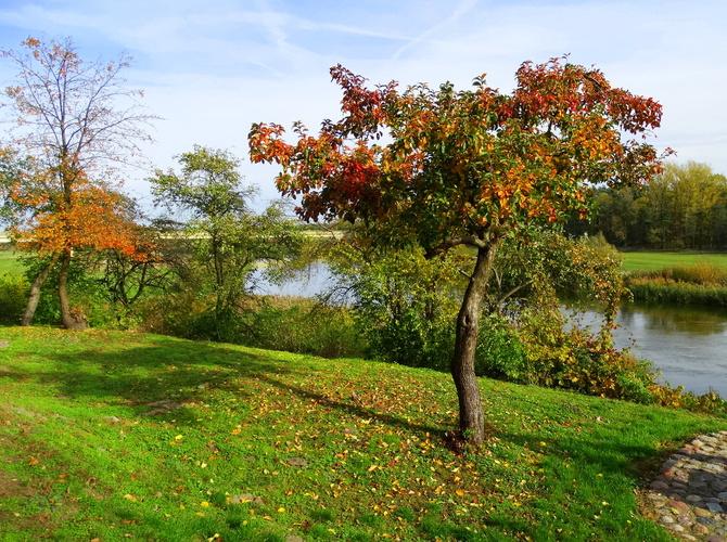 Jesień zawitała nad Wartę :)
