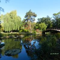 Jesień w Ogrodzie Botanicznym