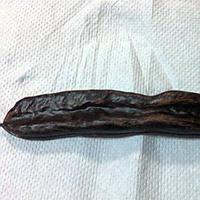 Owoc korabu/ chleba świętojańskiego