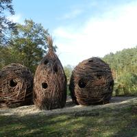 Wiklinowe domki w parku