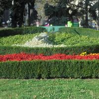 Zegar z kwiatów w moim mieście