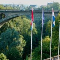 Atrakcyjny most i b. wysokie drzewa w Luksemburgu.