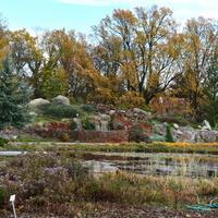 Listopadowa jesień w ogrodzie botanicznym
