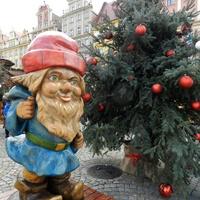 Choinka  na Wrocławskim Rynku