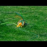 Pajączek podlewający trawnik