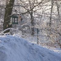 Zima dla Ani :)