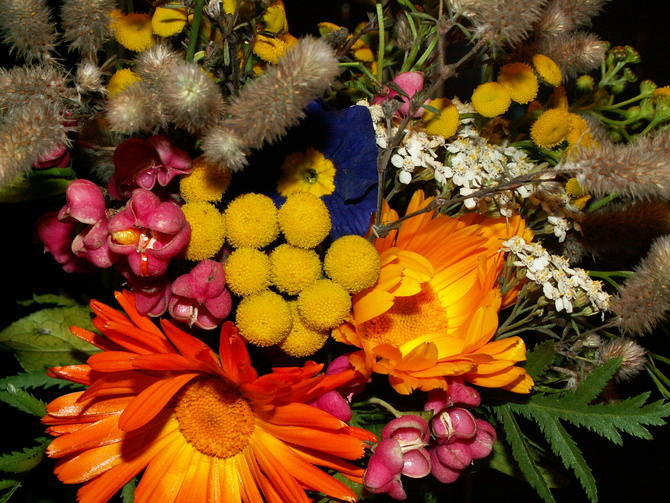 Bukiecik jesiennych kwitów