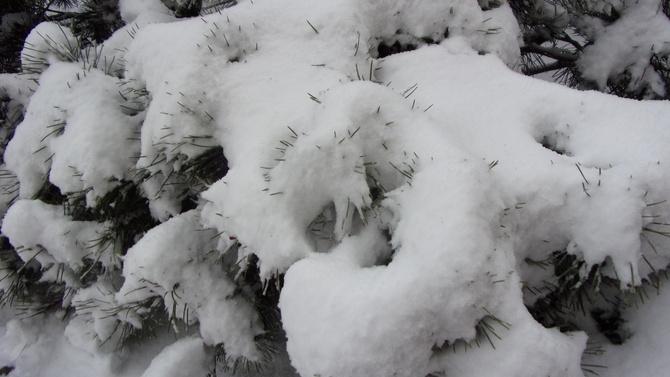 Jeszcze taka zimowa reminiscencja.......