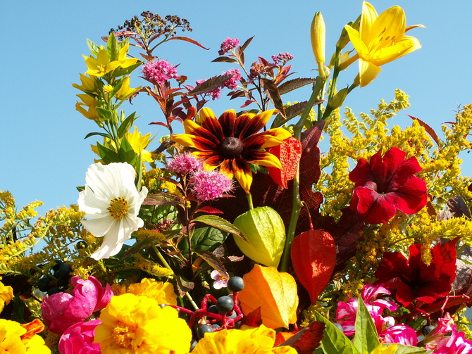 Kwiaty jesienne w bukiecie
